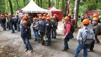 Austrian logging conference report