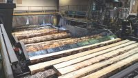 Timber industry's race against the clock