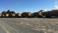 New cradle containers revolutionise log transport