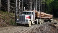 Human drivers still key to haul logs