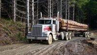 Human drivers still key to haul logs
