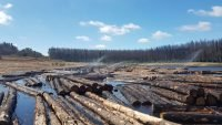 Sprinklers start at log water storage