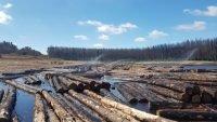 Sprinklers start at log water storage