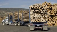 Canada invests in hybrid log trucks